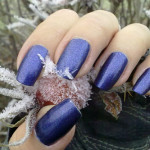 OPI  – Russian Navy in the frost