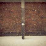 Jag se det snöar….
