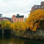 Norrköping i höstskrud
