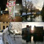 Vecka 50 med Instagram