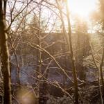 Att utforska spåren i snön